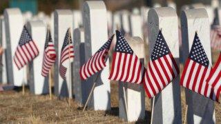Veterans Day Colorado