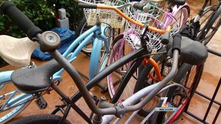 bikes generic