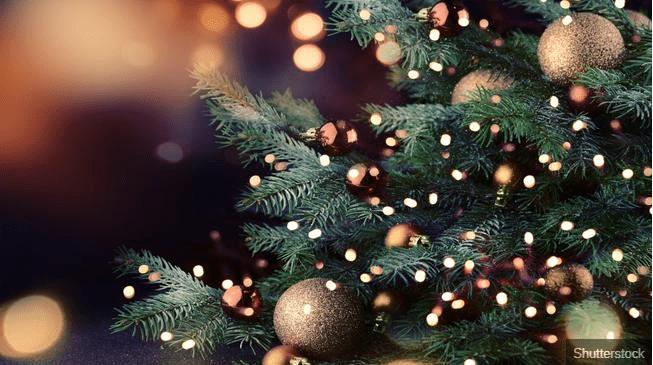 tree-arbol-navidad